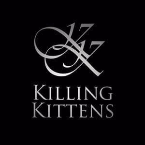 KILLING KITTENS LIMITED    Accounts    Seedrs    Crowdfunding Tracker    Companies House