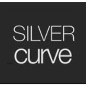 SILVER CURVE LIMITED    Accounts    Seedrs    Crowdfunding Tracker    Companies House